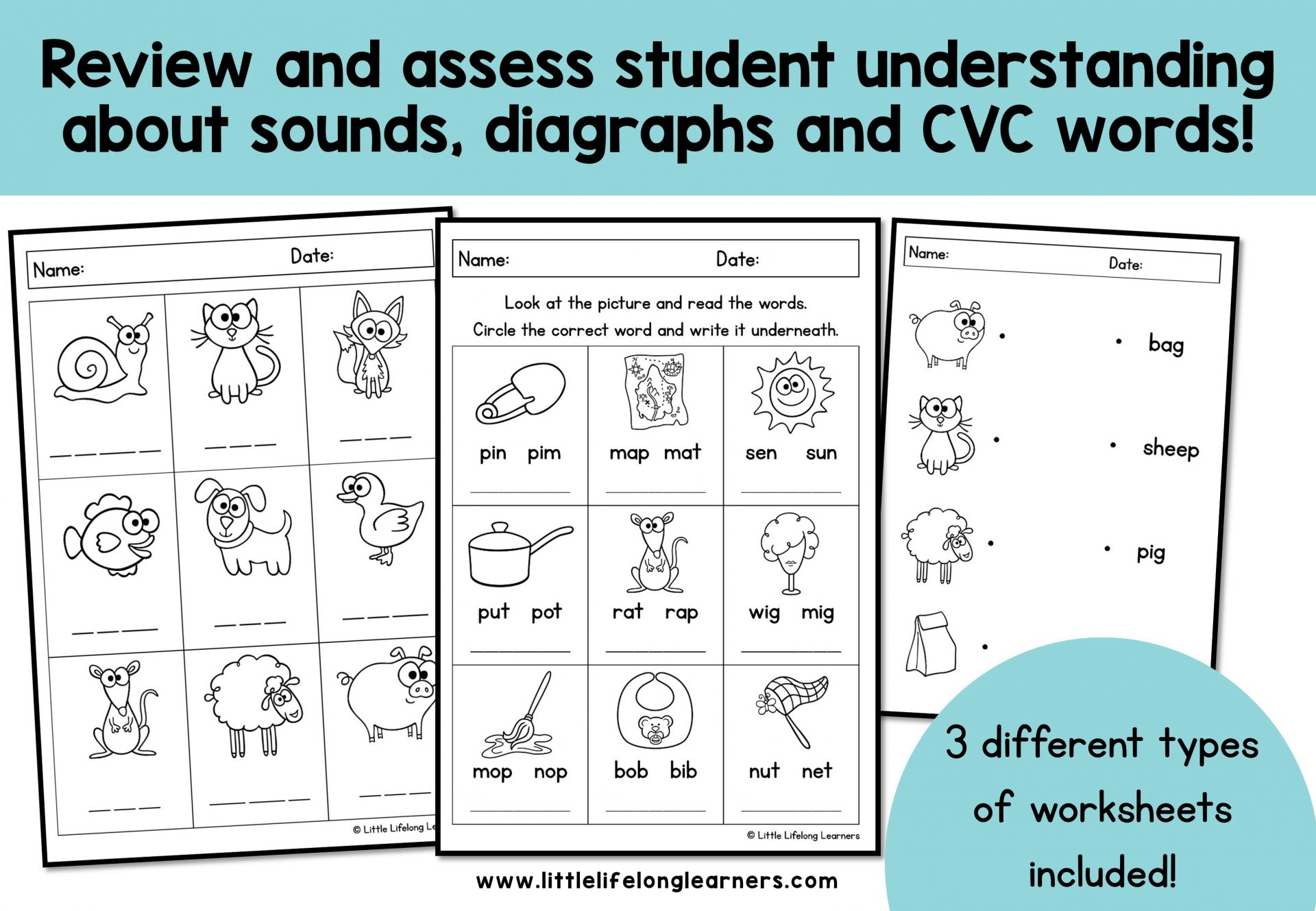 Phonics Worksheets - Assessment and Revision - The ...